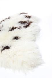 IJslands langharige schapenvacht MULTICOLOR