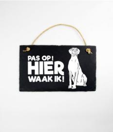 Leisteen Dieren - Deense/Duitse Dog