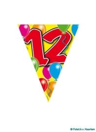 Vlaggenlijn - 12 jaar