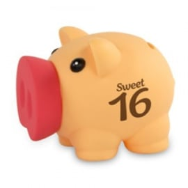 Fun spaarvarken sweet 16