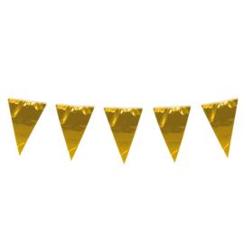 Vlaggenlijn goud XL