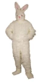 Kostuum konijn professioneel