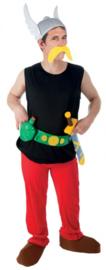 Asterix kostuum® luxe