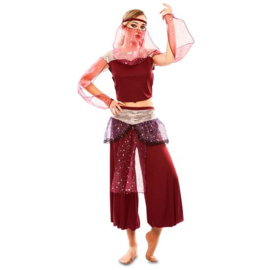 1001 harem dame kostuum