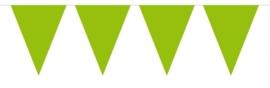 Mini vlaggenlijn lime groen