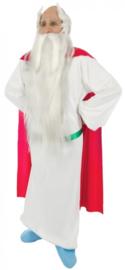 Panoramix kostuum® luxe