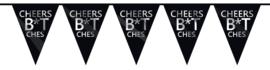 Vlaggenlijn Cheers B*tches 6m