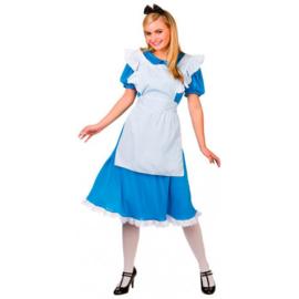 Storybook Alice kostuum