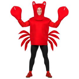 Krab kostuum