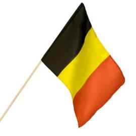Zwaaivlag Belgie groot