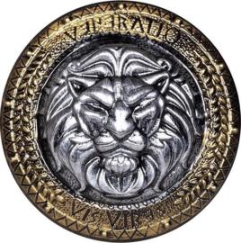 Ridderschild Heren/jongens 57 Cm Pvc Goud/zilver |