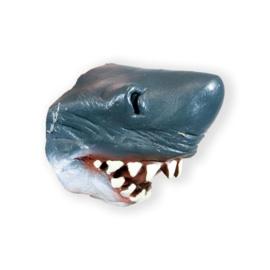 Haaien neus