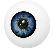 Kunststof oog blauw