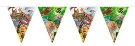 Vlaggenlijn Safari