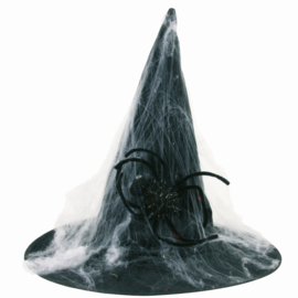 Heksenhoed spinnenweb