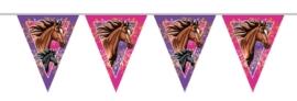I love paarden vlaggenlijn