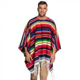 Poncho Diego mexicano