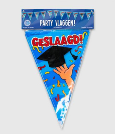 Party Vlaggen - Geslaagd school cartoon | Vlaggenlijn