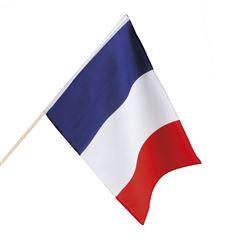Zwaaivlag Frankrijk groot