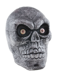 Skelet hoofd lightning