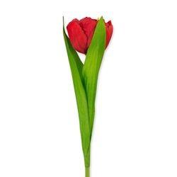 Huisvaasje - namaaktulp rood |