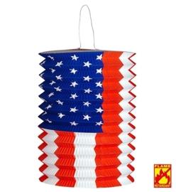 Lampion amerika