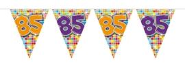Mini vlaggenlijn 85 jaar
