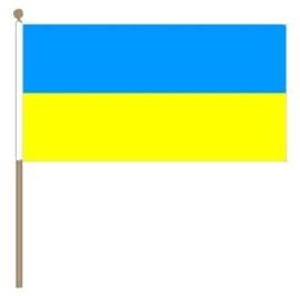 Zwaai vlaggetje Oekraine
