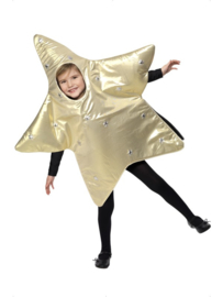 Kerst ster kostuum
