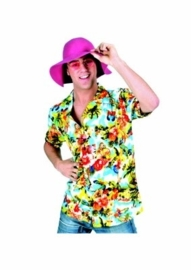 Hawai shirt