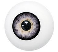 Kunststof oog grijs