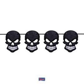 Vlaggenlijn schedel