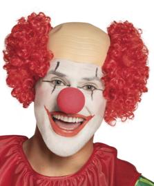 Clowns pruik Bardy