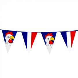 Reuze vlaggenlijn Frankrijk