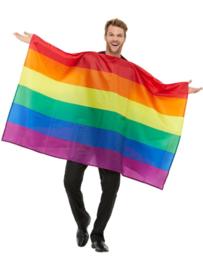 Vlag regenboog cape