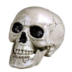 Skelet hoofd 21cm