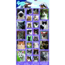 Sticker vel Cats