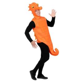 Zeepaard kostuums