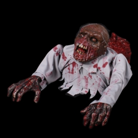 Kruipende zombie pro