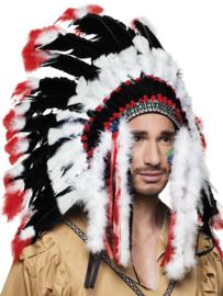 Tooi indiaan Apache