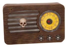 Radio licht en geluid 30x20cm
