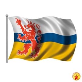Vlag Limburg 90x150cm