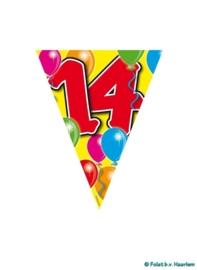 Vlaggenlijn - 14 jaar