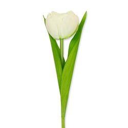 Huisvaasje - Namaaktulp wit |