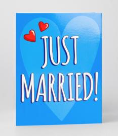 Fun suprise kaart just married