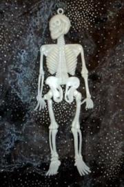 Skelet mini