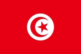 Vlag Tunesie 90x150cm