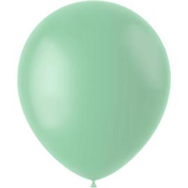 Ballonnen Powder Pistache Mat 33cm - 50 stuks