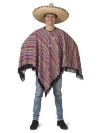 Trotse patricio poncho heer | Mexico man