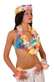 Hawaii set shiney
